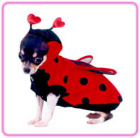 Lady Bug dog Halloween Costume