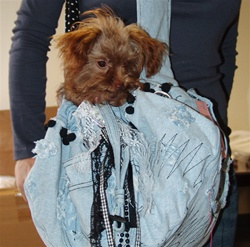 Denim Dog sling Carrier